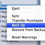 Ripristinare Dati iPhone da Backup